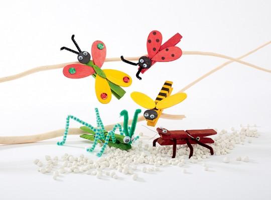 Hmyzí království