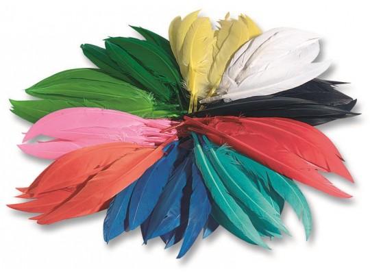 Peří dekorační indiánské                                                                                                                                                                                                                           (500ks)