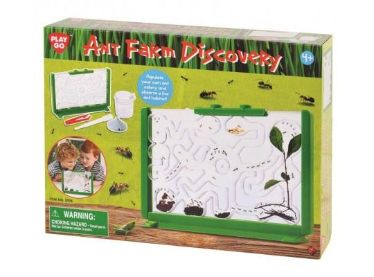 Farma mravenčí