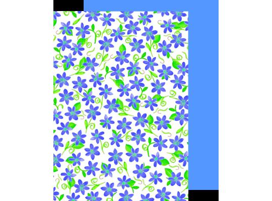 Fotokarton fialky modré