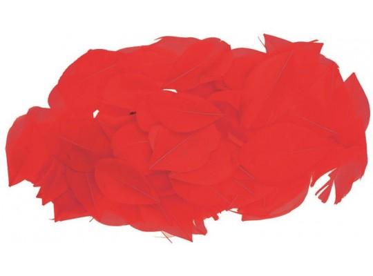 Peří - listy červené (70ks)