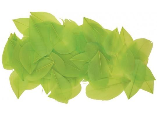 Peří - listy zelené (70ks)