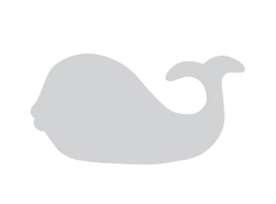 Velryba z lepenky-22x11cm