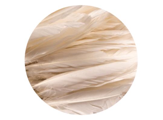 Peří dekorační bílé-pevné