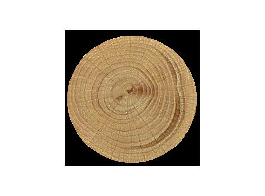 Kolečko bukové-průměr 5cm