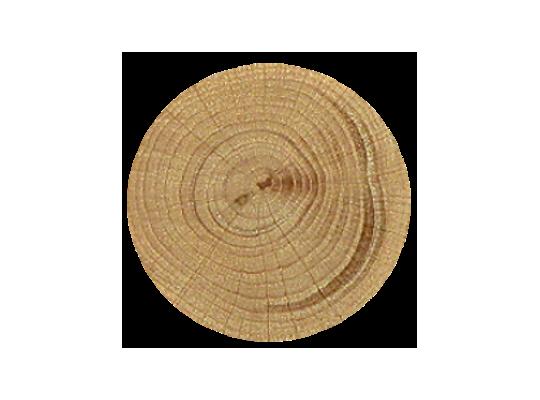 Kolečko bukové-průměr 6cm