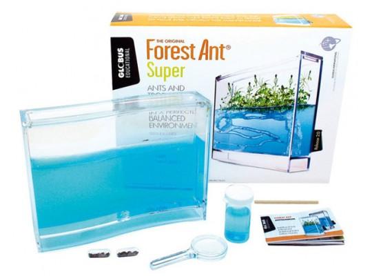 Mravenčí terárium-Antquarium Super Forest