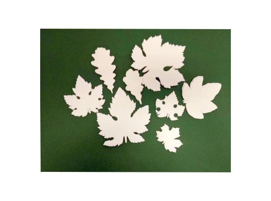 Listy zpapíru bílé-sada (30)