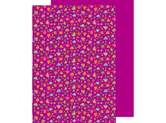 Fotokarton A4-houby-250g/m2