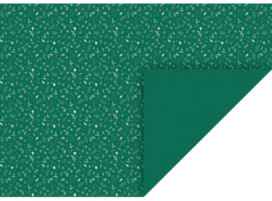Fotokarton-300g/m2-listy/plody/větve-zelený-50x70cm