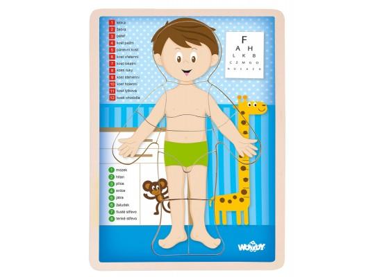 Tělo lidské-kluk-puzzle