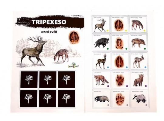 Tripexeso z papíru-zvěř lesní