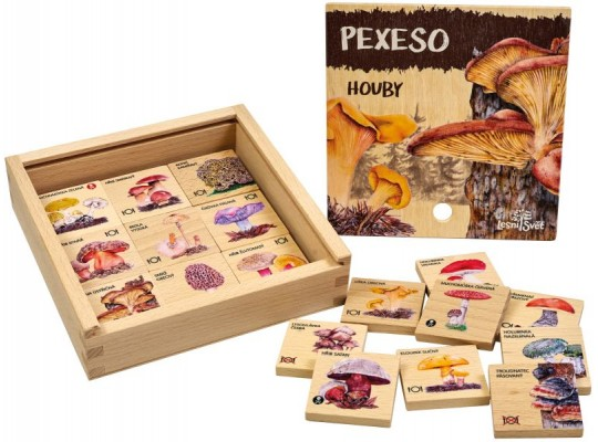 Pexeso dřevěné naučné/edukativní-Houby