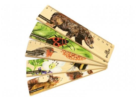 Pravítko dřevěné-15cm-Příroda