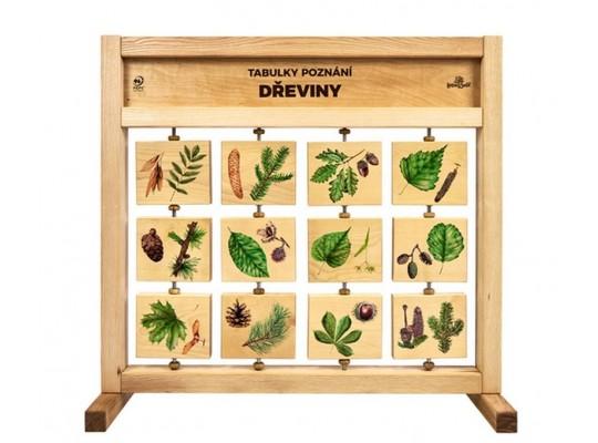 Tabule naučná/informační-dřevěná-stolní-Dřeviny