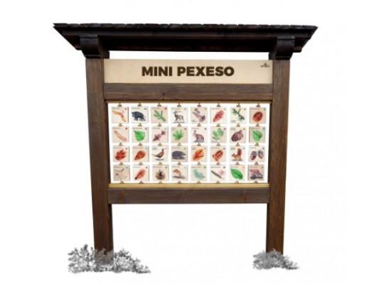 Tabule naučná/informační-dřevěná-stolní-Pexeso příroda