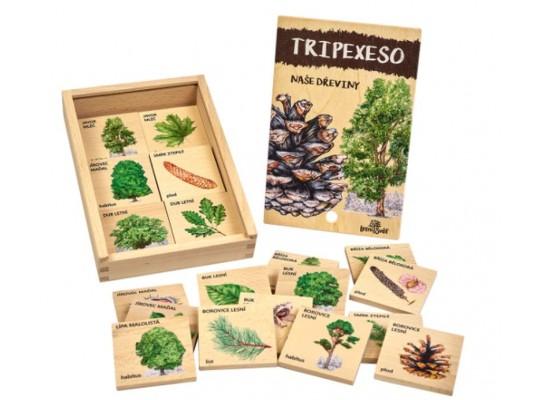Tripexeso dřevěné-naučné/edukativní-Dřeviny