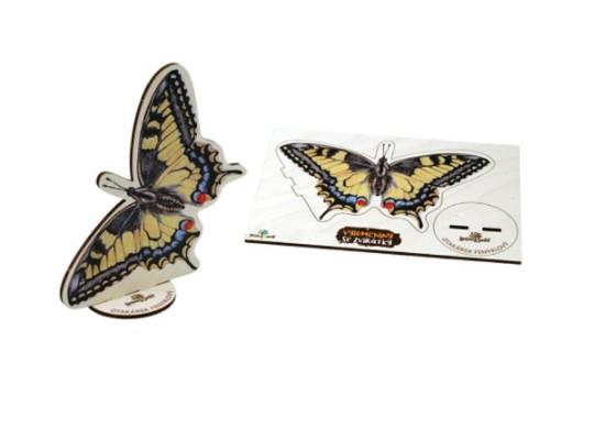 """Deska z překližky-tvar vylamovací-Motýl """"Otakárek"""""""